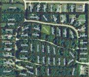 245 Meadow-Wood Drive, Harbor Springs image