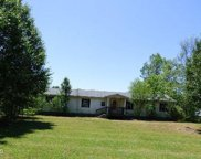 202 Bob Kennedy Road, Beulaville image