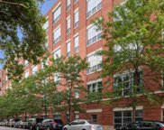 1735 North Paulina Street Unit 314, Chicago image