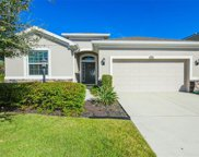 15603 Lemon Fish Drive, Lakewood Ranch image