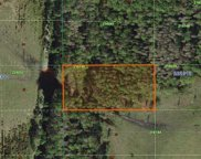 Inaccessible Tract Lot 72, Davenport image