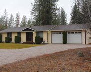 4043 Pine Meadows, Loon Lake image