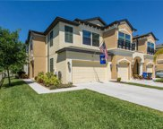 11502 Crowned Sparrow Lane, Tampa image