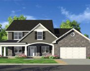 131 Timber Wolf/Valley SAWGRASS, Festus image