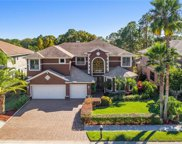 12804 Eagles Entry Drive, Odessa image