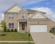 8020 Forest Hills Drive, Spring Hill image