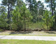 1105 Cycad Drive, Myrtle Beach image