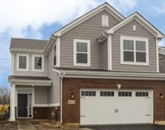 16201 West Switch Grass  Lot#1401 Road, Lockport image