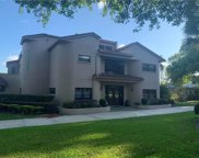 10318 Down Lakeview Circle, Windermere image