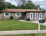 1107 N Palm Avenue, Kissimmee image
