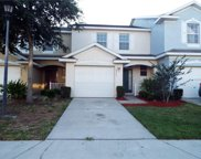 6205 Olivedale Drive, Riverview image