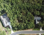 234 Hunter Oak Ct., Pawleys Island image