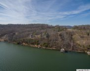 152 Lookout Mountain Drive, Scottsboro image