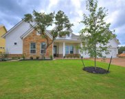 219 Townes Ct, Dripping Springs image