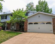 14918 Greenberry Hill  Court, Chesterfield image