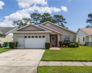 294 Indian Point Circle, Kissimmee image