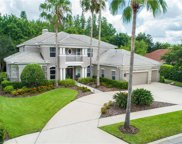 9822 Emerald Links Drive, Tampa image