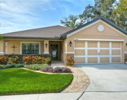 12288 Legacy Bright Street, Riverview image