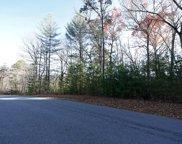 LT121 Fox Lake, Blairsville image