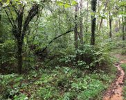 LOT 64 Green River Cove  Road, Saluda image