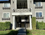 15415 35th Ave W Unit E206, Lynnwood image