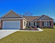 805 Ogeechee Ct, Conway image