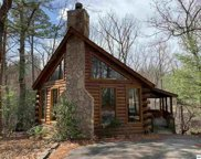 2332 Raymond Hollow Rd, Sevierville image