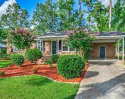1212 Snowhill Drive, Conway image