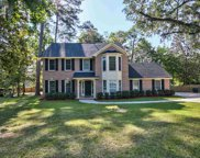 2478 Pale Tiger, Tallahassee image