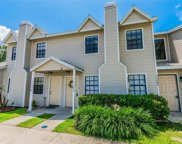 12680 Castle Hill Drive, Tampa image