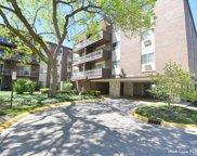 1331 S Finley Road Unit #114, Lombard image