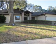 1459 Wetherington Way, Palm Harbor image
