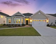 117 Beargrass Lane, Summerville image