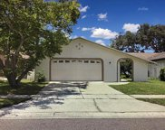 10537 Wyndcliff Drive, Orlando image