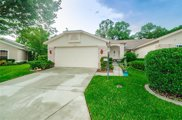 10030 Brookdale Drive, New Port Richey image