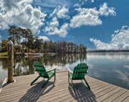 1117 Marble Arch Court, Chapin image