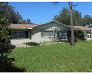 415 E Lakeview Avenue, Eustis image