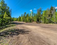 10622 Shady Pines Drive, Morrison image