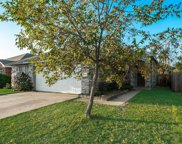 425 Shadow Grass Avenue, Fort Worth image