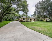1603 Regal Oak Drive, Kissimmee image