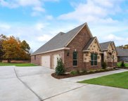 116 Willow Oak Drive, Krugerville image