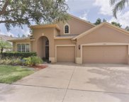 1508 Tawnyberry Court, Trinity image