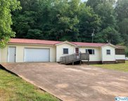 11590 Patterson Hill Road, Elkmont image