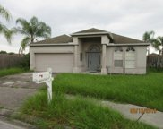 24645 Victoria Wood Court, Lutz image