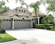 10244 Arbor Side Drive, Tampa image