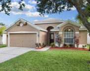 13505 Staghorn Road, Tampa image