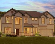 10502 Cardera Drive, Riverview image