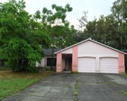 8051 Wooden Drive, Spring Hill image