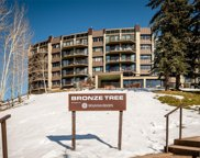 1995 Storm Meadows Drive Unit 204, Steamboat Springs image