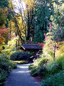 Find Nature Near Bellevue Homes in the Botanical Gardens